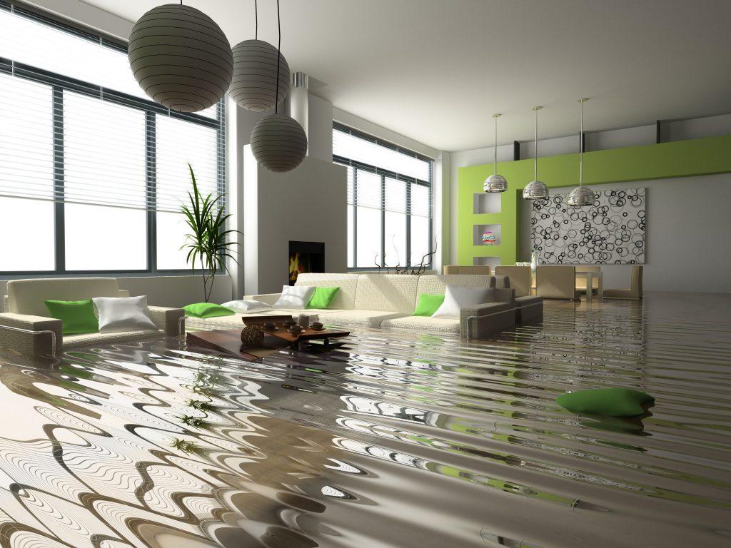 Su baskını Temizliği